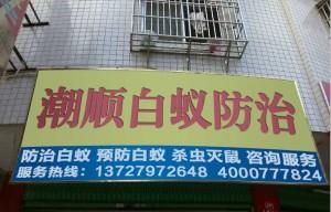 潮州白蚁防治站